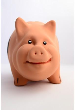 pusculita-din-ceramica-porc-cu-pete